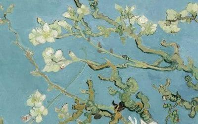 Van Gogh ve Bademler